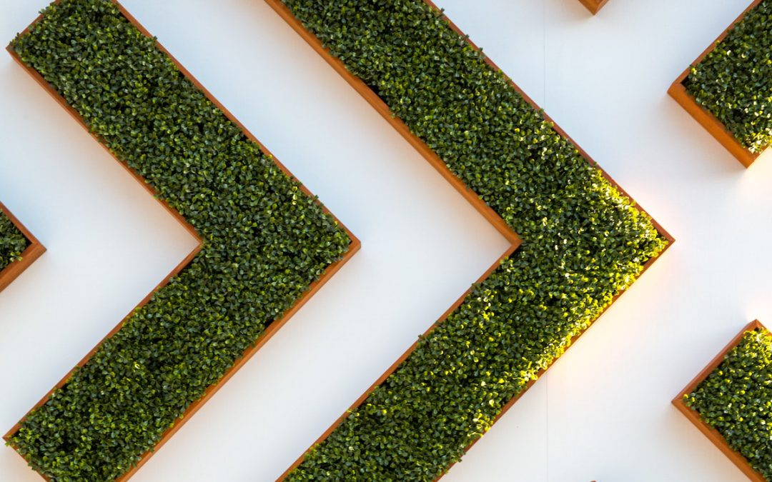 What Changes Have Happened to ESG in Europe?