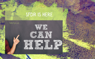 SFDR is here. What now?